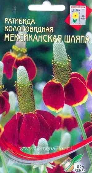 Цветок мексиканская шляпа