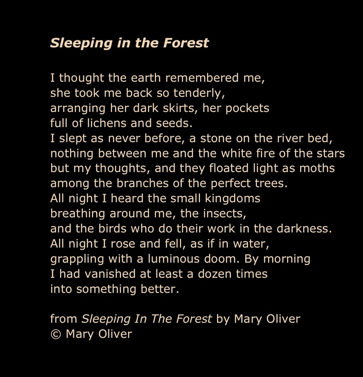 Mary Oliver Love Quotes: 148 Best Images About Mary Oliver On Pinterest