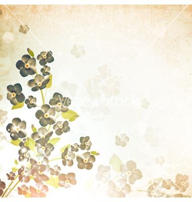 Forget-me-not flower vintage background vector