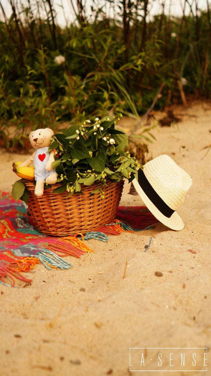 Picnic#summer time#flowers#Gdynia
