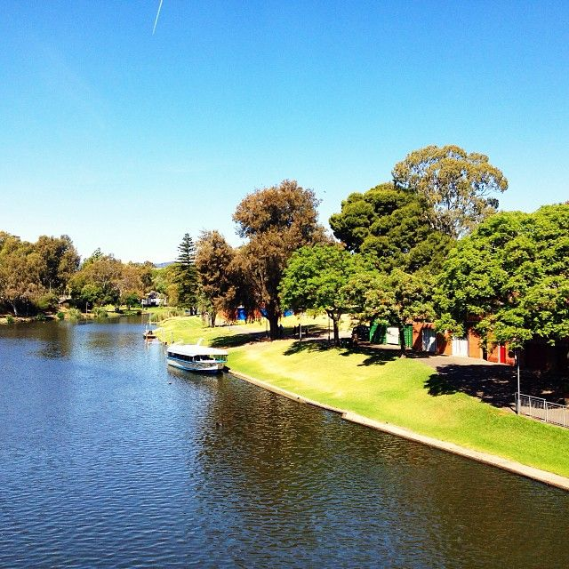 A great walk for all the family, down by the banks of the river Torrens