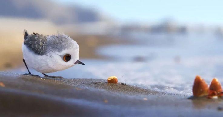 Wie Finding Dory in de bioscoop is gaan bekijken, moet dit wondermooie werkstukje van Pixar herkennen. Voor alle anderen staat Piper sinds kort online:…