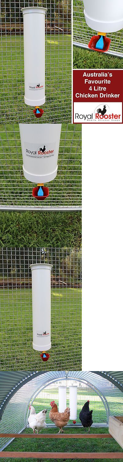 Backyard Poultry Supplies 177801: Royal Rooster Chicken / Poultry Coop - Single Waterer / Drinker BUY IT NOW ONLY: $49.99