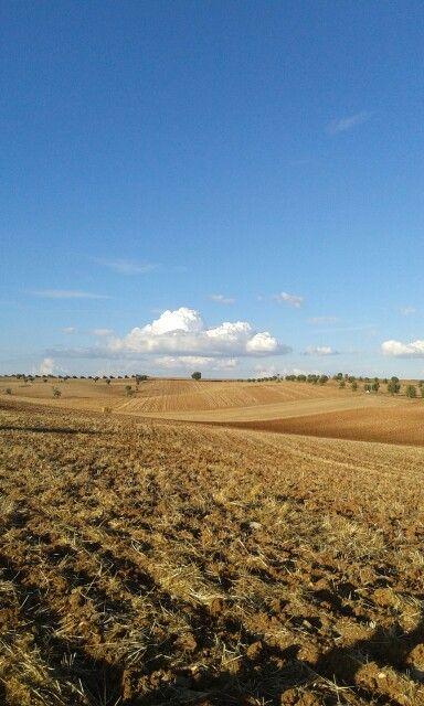 Baixo alentejo. www.casanaaldeia.com