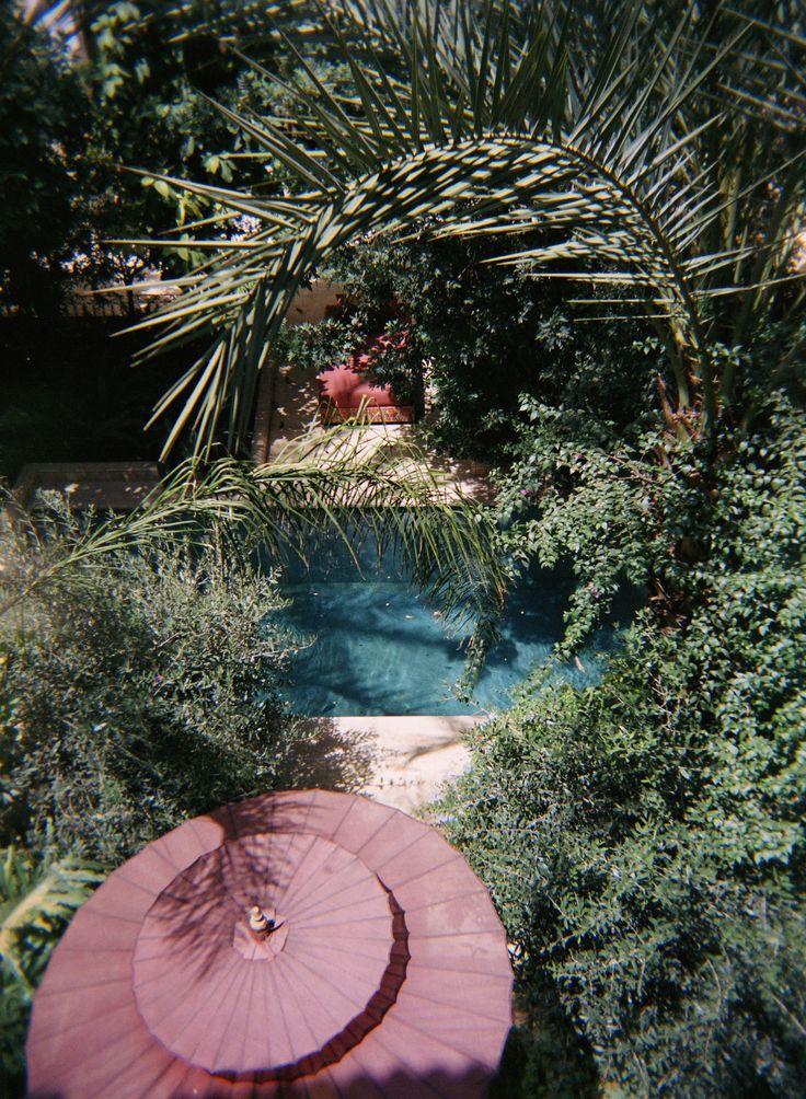 Le jardin d'été... © 2015 Marion Lécrivain.