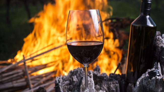 Tony Love?s Top 100 Wines Winter Edition features the best hearty reds to enjoy in front of a roaring fire.