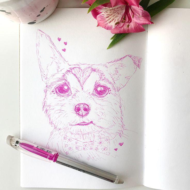 Pink pet portrait sketch dog jack Russell chihuahua  pet portrait