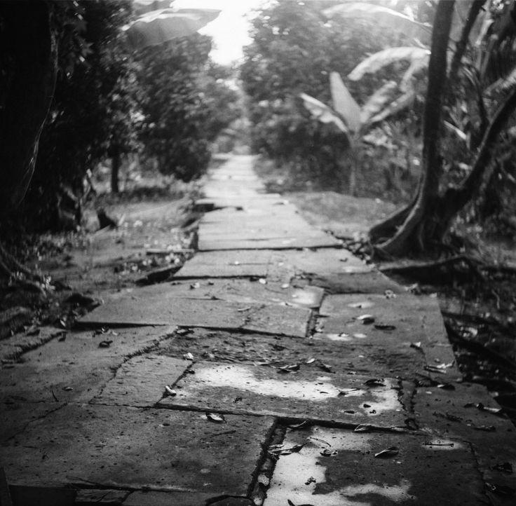 Path in the delta