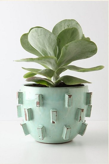 anthropologie $60: Plants Can, Idea, Anthropology, Color, Blocks Planters, Photo, Outdoor Planters