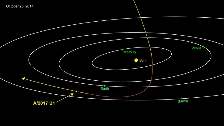 A visitor from interstellar space has apparently been spotted in our solar system for the first time ever.