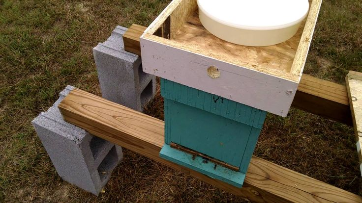 Hive Top Feeder From Barnyard bees | Bee, Hives, Bee keeping