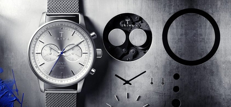 Triwa Nevil Steel - http://www.horloges.nl/triwa-stirling-steel-nevil