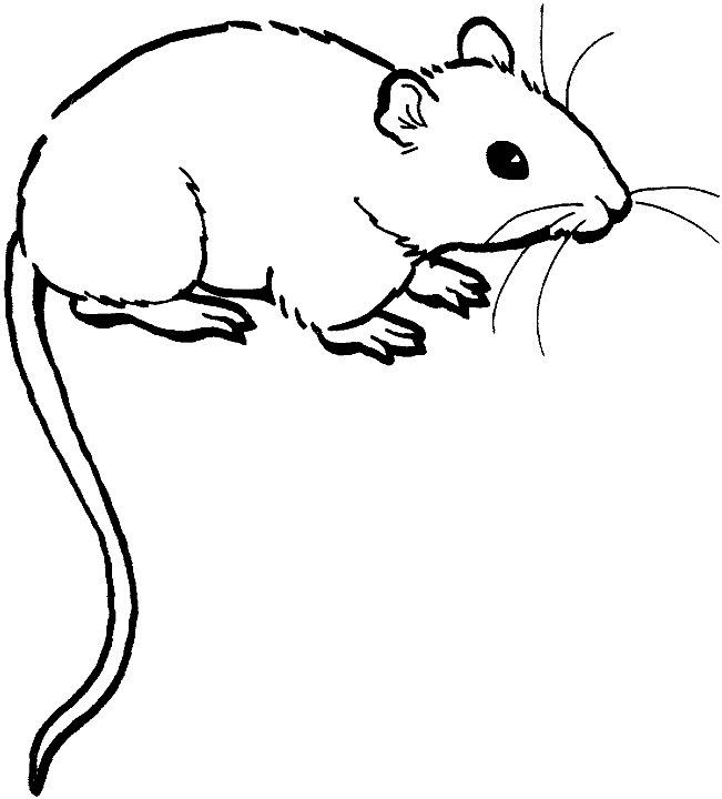 gaujard coloring pages - photo#30