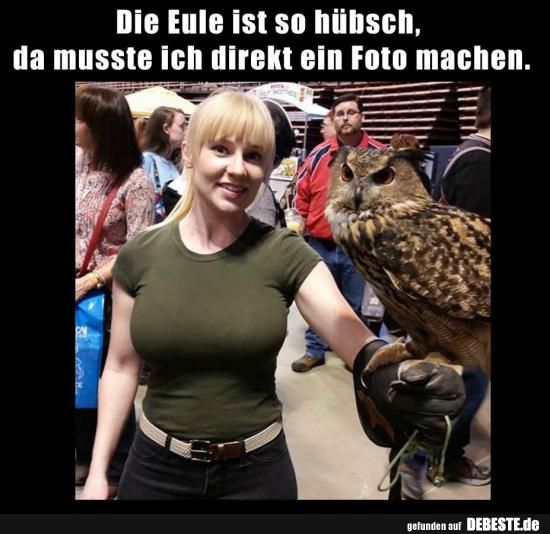 The owl is so pretty, I had to take a picture directly ..   Funny pictures, sayings, jokes, really funny