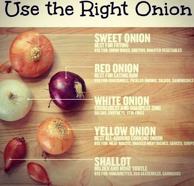 Use the right onion interesting facts pinterest onions and the o 39 jays - Unknown uses for an onion ...