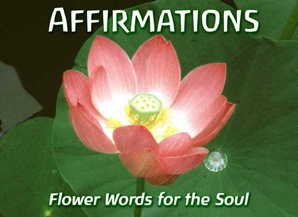 Do you use affirmations? Daily affirmations are a powerful way to take control of certain things in your life. http://sixsensespsychicreadings.com/blog/do-you-use-affirmations-