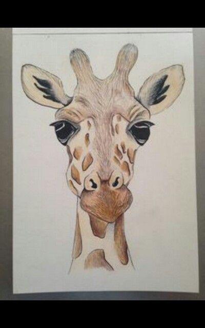 Oltre 25 fantastiche idee su Disegno giraffa su Pinterest Arte - griffe für küche