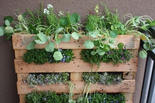 Pour mon mini jardin