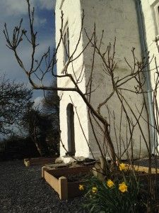 The Natural Building Centre - Limewashing on a bright spring day.