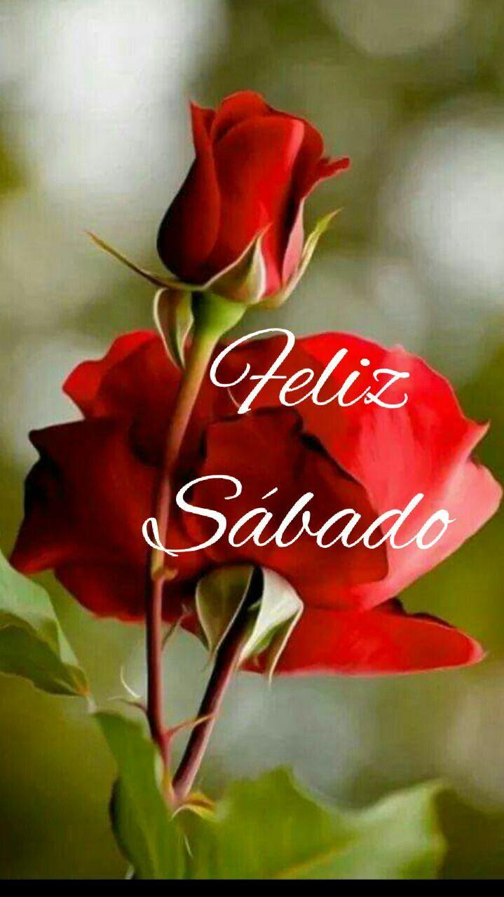 Bom dia Beijos (Espero que estejas bem...!)
