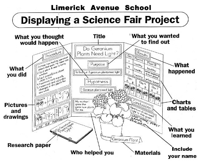 science projects research papers Elementary school science fair projects ideas - free project examples by grade level find a wide range of science fair projects for kids as well as ideas that will help challenge and guide children research paper handouts through whatever subject they investigate first step.