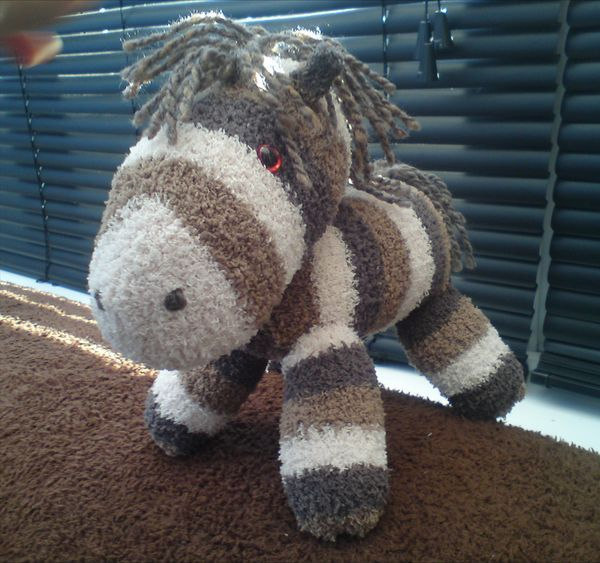 sock animals - pony just don't make them out of old socks because then they might smell EW