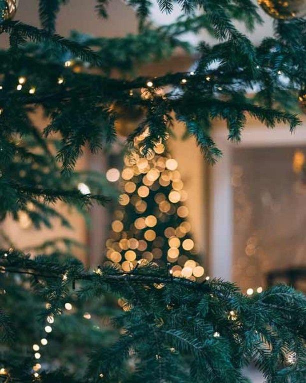 What Happens Under The Mistletoe Stays Under The Mistletoe Merry Christmas To All Christmas Tree Wallpaper Wallpaper Iphone Christmas Christmas Wallpaper Free