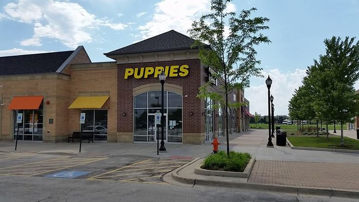 "As Chicago moves forward toward the ban on the sale of puppy mill dogs in pet stores, it appears that Naperville is moving backwards. The community that is already the puppy mill outlet capital of America will soon have a ""new and improved"" pet store in the city. A brand spanking new Happiness is Pets... <a href=""http://www.chicagonow.com/raining-cats-dogs/2014/06/naperville-puppy-mill-outlet-capital/"" class=""..."