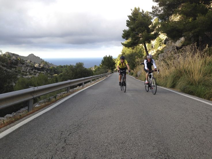 Pine trees, nice roads and sea.Cycling in Mallorca