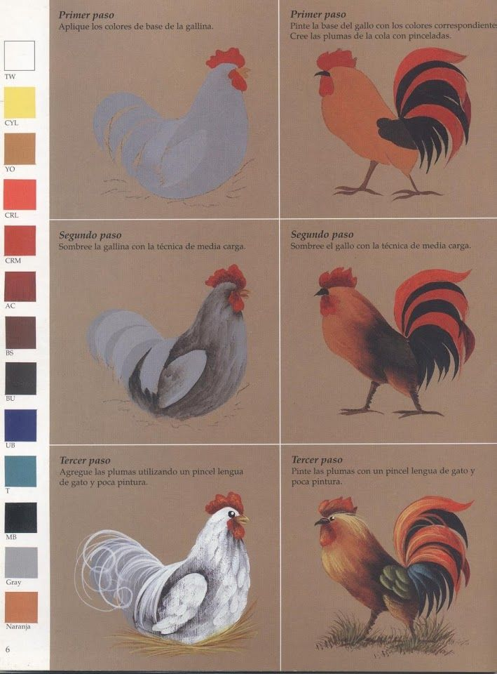 Rooster tutorial