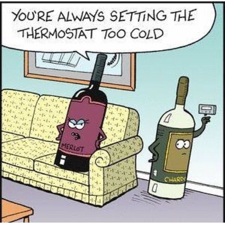 Humor Inspirational Quotes: Best 25+ Wine Funnies Ideas On Pinterest