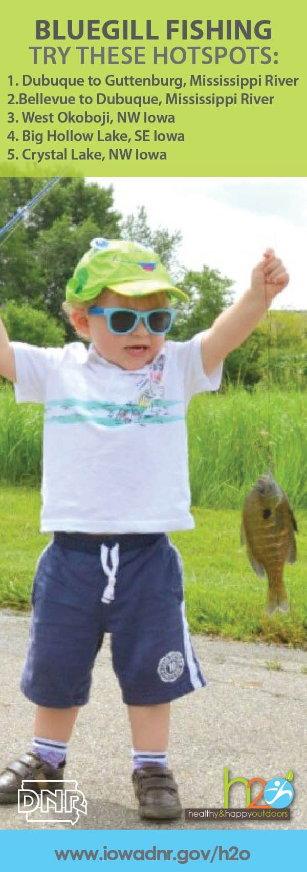Great #Iowa spots for catching #bluegill!