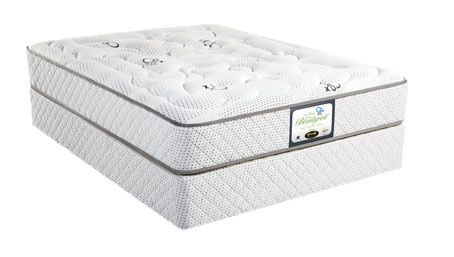 Welcome to My New Bed - Bulk bed suppliers | Beds for sale | Single Beds | Double Beds | For Sale | Specials | Quality |