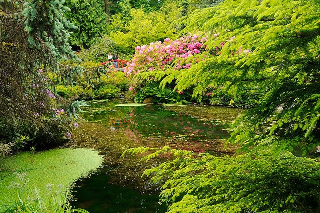 Did you know Kubota Garden is in the city? What are you favorite Seattle city parks?     Image: Will Austin