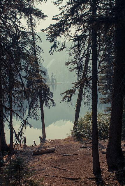 my dream life is to wake up in a place like this everday and hike up a mountain with my doggy..... somedayyy <3