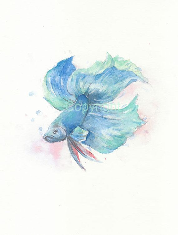 Fish fish print fish art blue Beta watercolor original by ChiFungW, $18.00