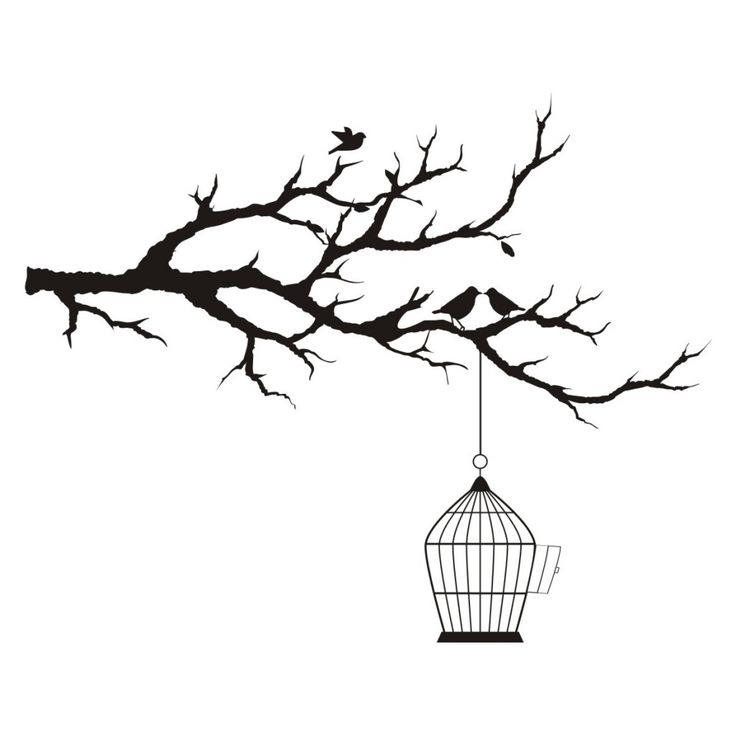 Branch Birdcage And Birds Black And White Tree White