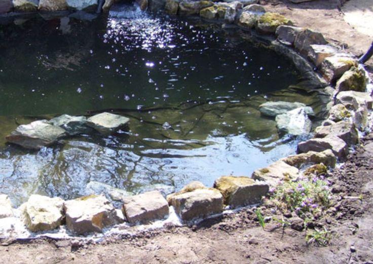 17 best natural garden ponds images on pinterest for Shallow garden pond