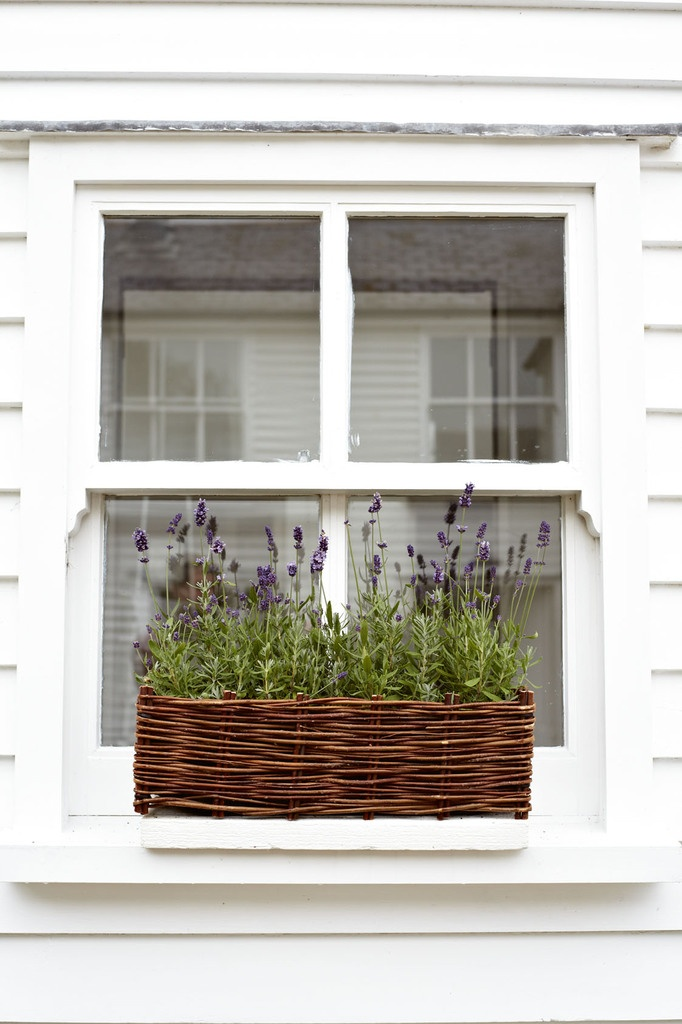 Window Box Lavender Planter --  I would LOVE to grow some lavender next spring/summer