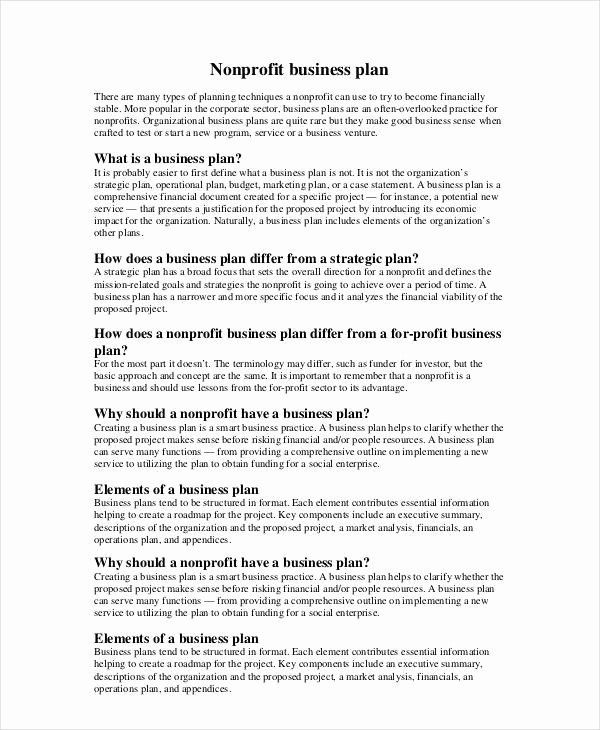 Nonprofit Strategic Plan Template Fresh Non Profit Business Plan 14 Pdf Word Doc Business Plan Template Word Business Plan Template Free Business Plan Template