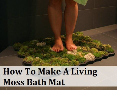 How To Make A Living Moss Bath Mat- I really want to do this!