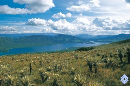 Embalse del Neusa (Colombia) visto desde los páramos circundantes que conservan la vegetación protectora del pajonal~frailejonal. Fotógrafo: Germán Montes
