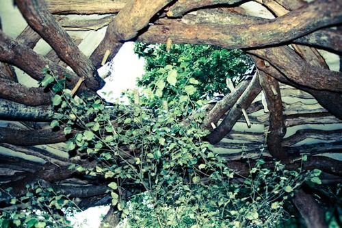 WoodHouse Wood child's playground (4).jpg