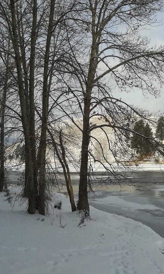 Bitterroot River near Lolo. Photo credit: Janet Spoon. From https://www.facebook.com/umontana