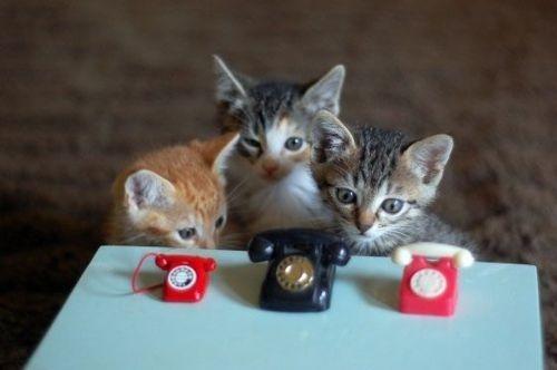 Tiny Telephones | 58 Very Tiny Cute Things