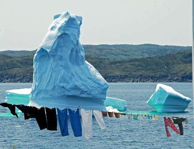 Newfoundland summer