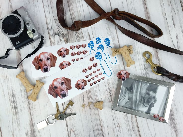 Custom stickers of your dog