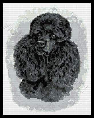 Black poodle cross stitch kit or pattern | Yiotas XStitch