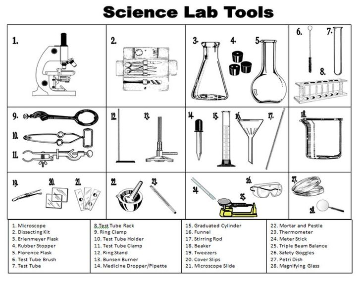 Best Lab Glassware Images On   Labs Science And School