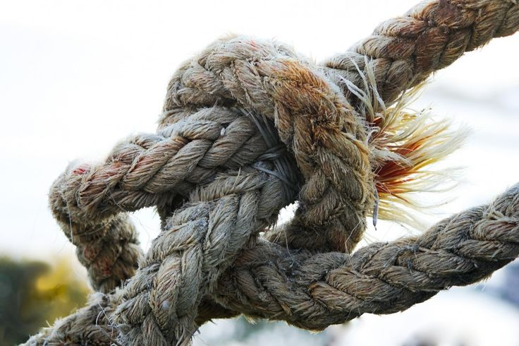 knot-531849_1920